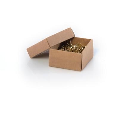 Wallace Box Of 200 Pins  - Gold - Shiraleah