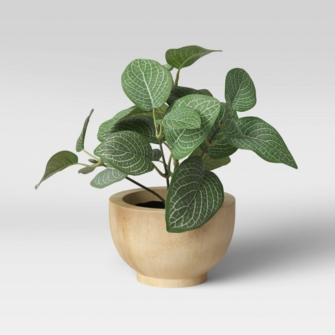 "8"" x 8"" Artificial Verigated Leaf House Plant in Pot - Threshold™ - image 1 of 4"