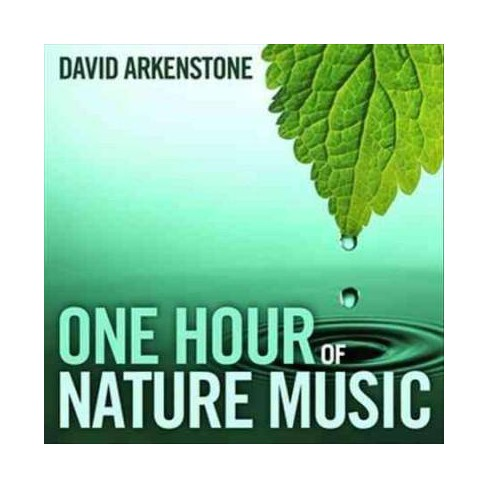 David Arkenstone - One Hour Of Nature Music: For Massage, Yoga And  Relaxation (CD)