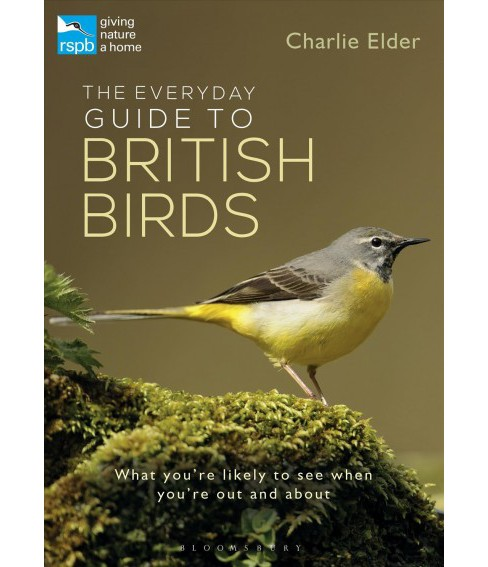 Everyday Guide to British Birds : Identify Our Common Species and Learn More About Their Lives - image 1 of 1