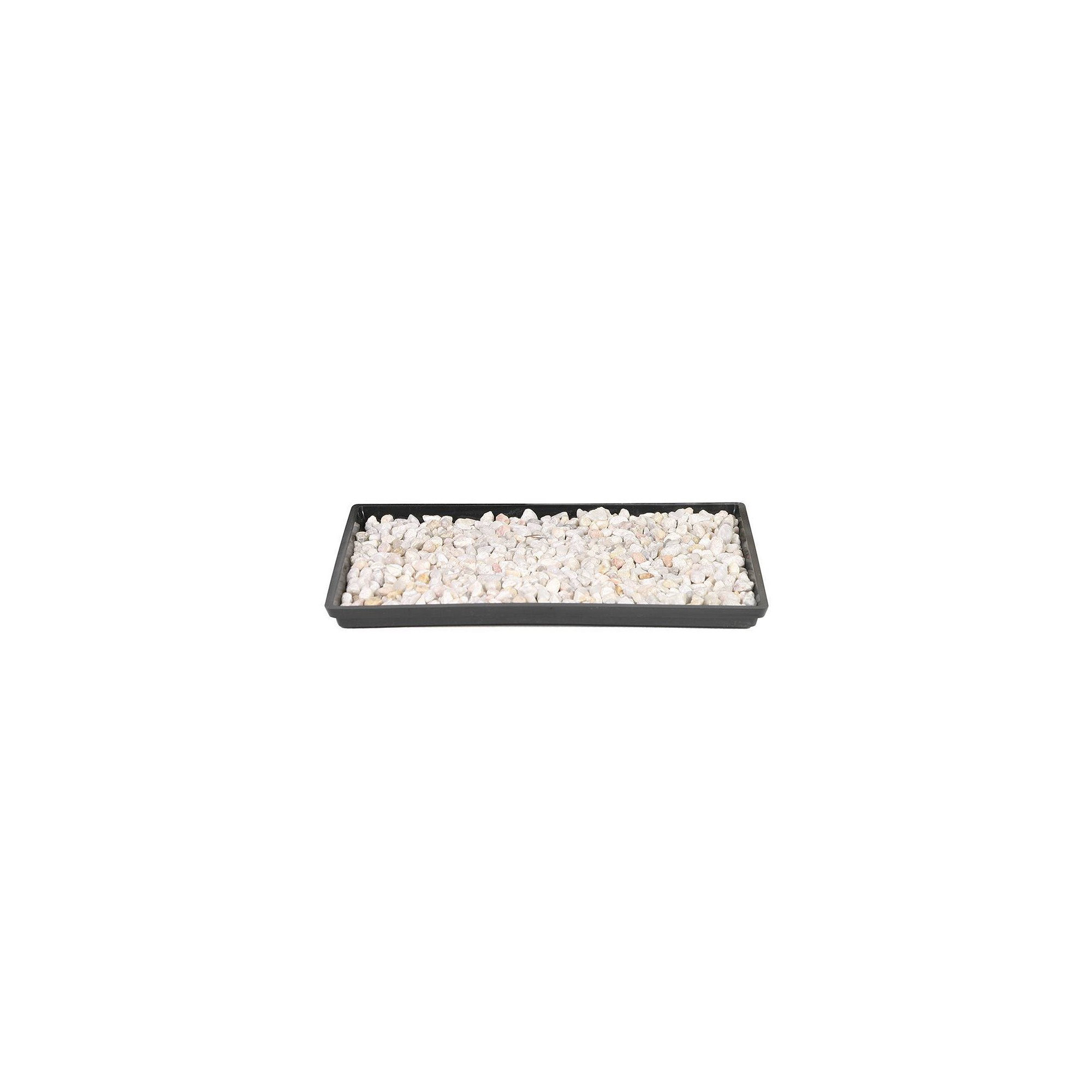 13 Humidity Tray - Brussel's Bonsai, Multi-Colored