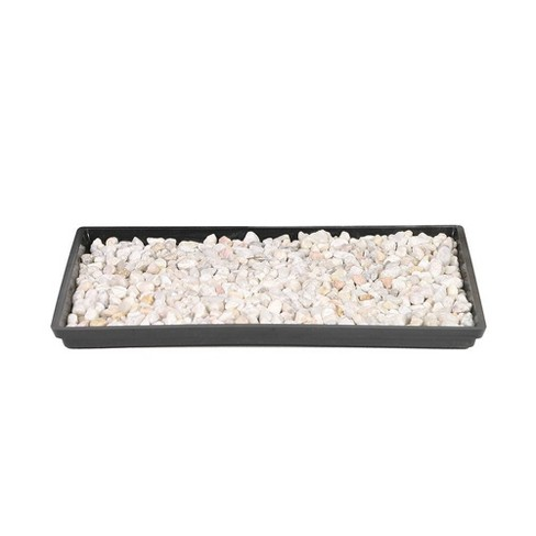 """13"""" Humidity Tray - Brussel's Bonsai - image 1 of 1"""