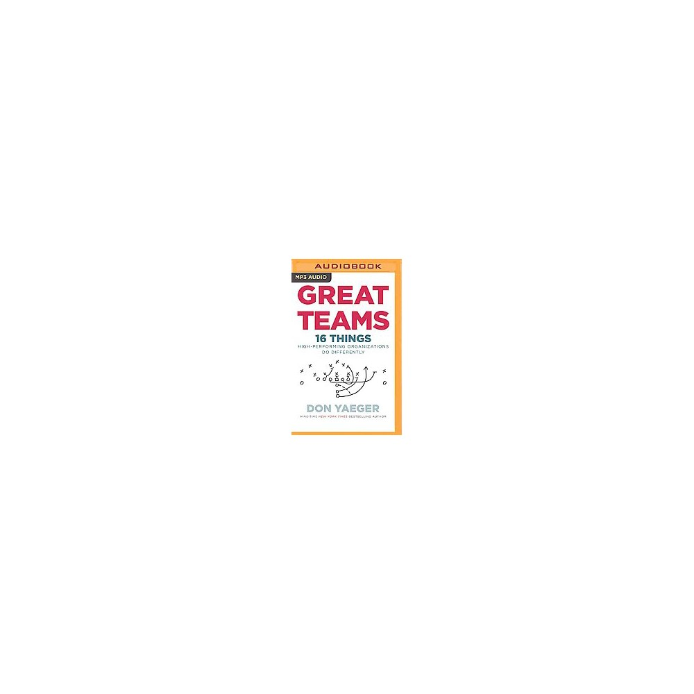 Great Teams : 16 Things High Performing Organizations Do Differently (Unabridged) (MP3-CD) (Don Yaeger)