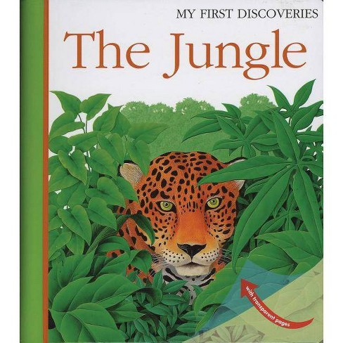 The Jungle - (My First Discoveries) by  Rene Mettler (Hardcover) - image 1 of 1