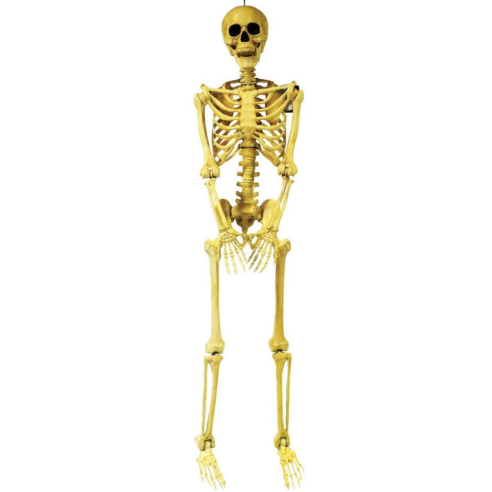 Image of 5' Skeleton Pose & Hold Halloween Decorative Holiday Mannequin