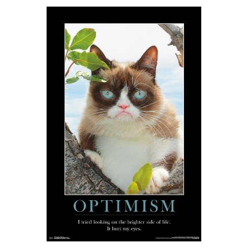 Grumpy Cat Brighter Side Poster 34x22 - Trends International - image 1 of 2