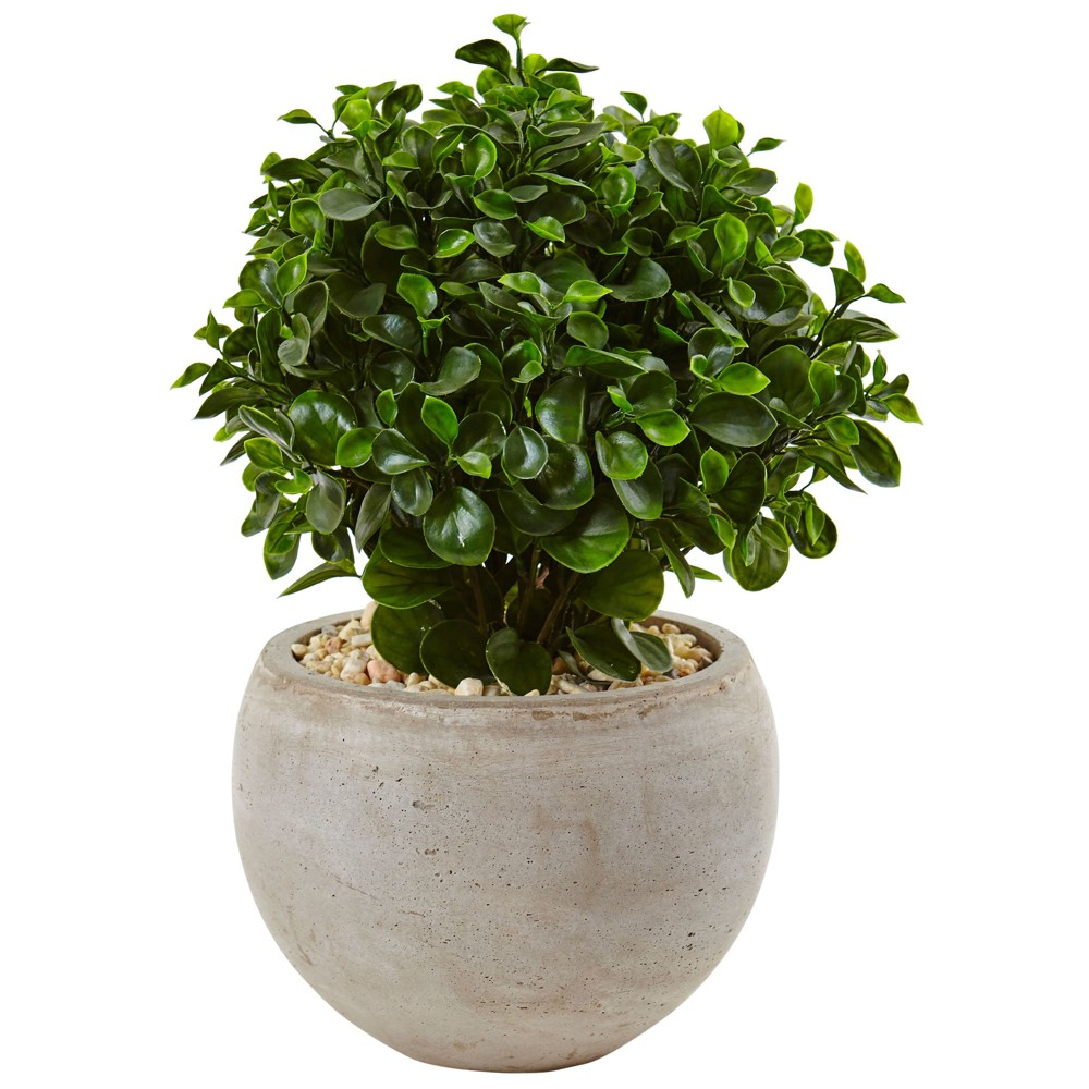 2' Eucalyptus Silk Plant In Sand Planter - Nearly Natural, Green
