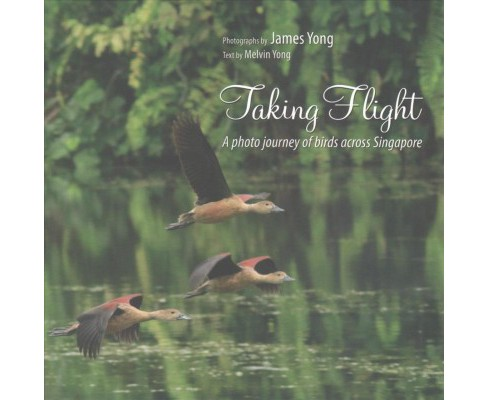 Taking Flight : A Photo Journey of Birds Across Singapore (Paperback) (Melvin  Yong) - image 1 of 1