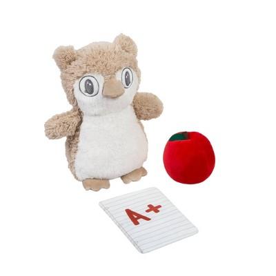 My 1st OccuPlaytion Owl Teacher - 3pc