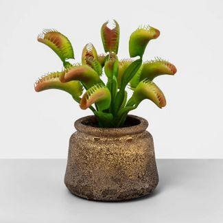 "11.6"" x 5.1"" Artificial Venus Fly Trap Plant - Opalhouse™"