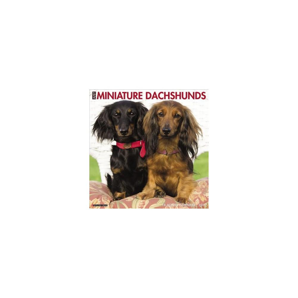 Just Mini Dachshunds 2019 Calendar - (Paperback)