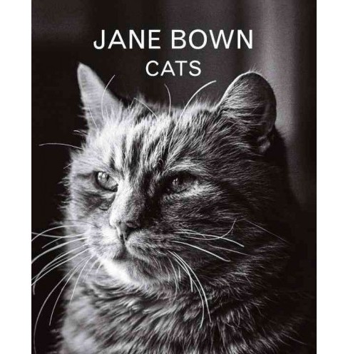 Jane Bown : Cats (Hardcover) - image 1 of 1