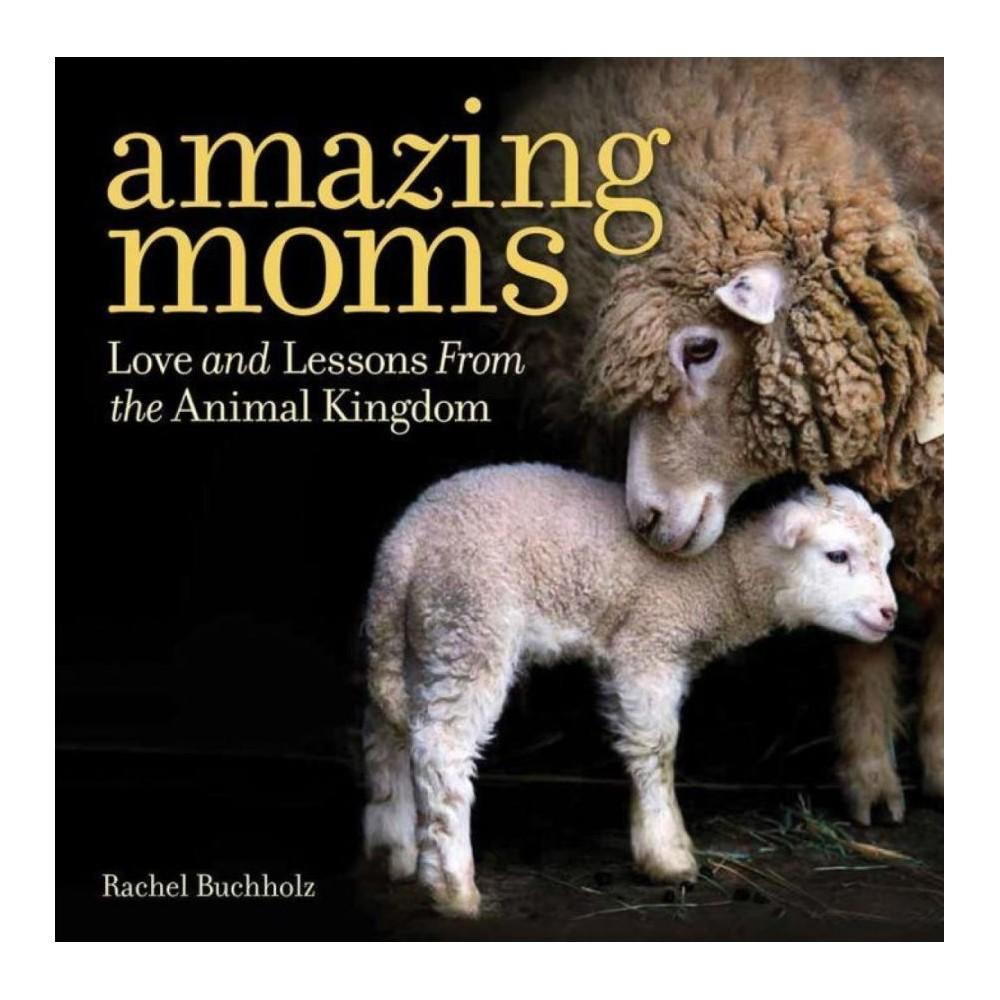 Amazing Moms (Hardcover) (Rachel Bucholz)