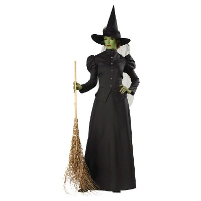 Adult Witch Classic Deluxe Halloween Costume