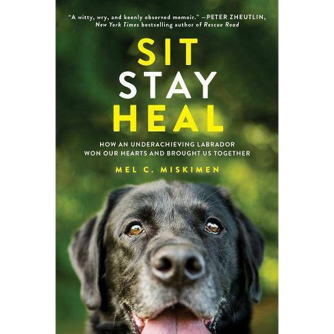 Sit Stay Heal : How an Underachieving Labrador Won Our Hearts and Brought Us Together (Paperback) (Mel - image 1 of 1