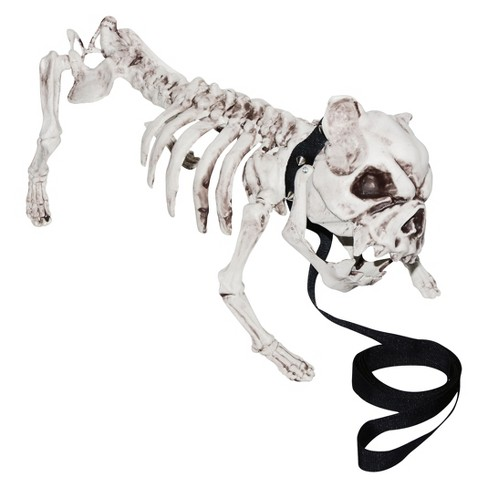 17 halloween dog skeleton