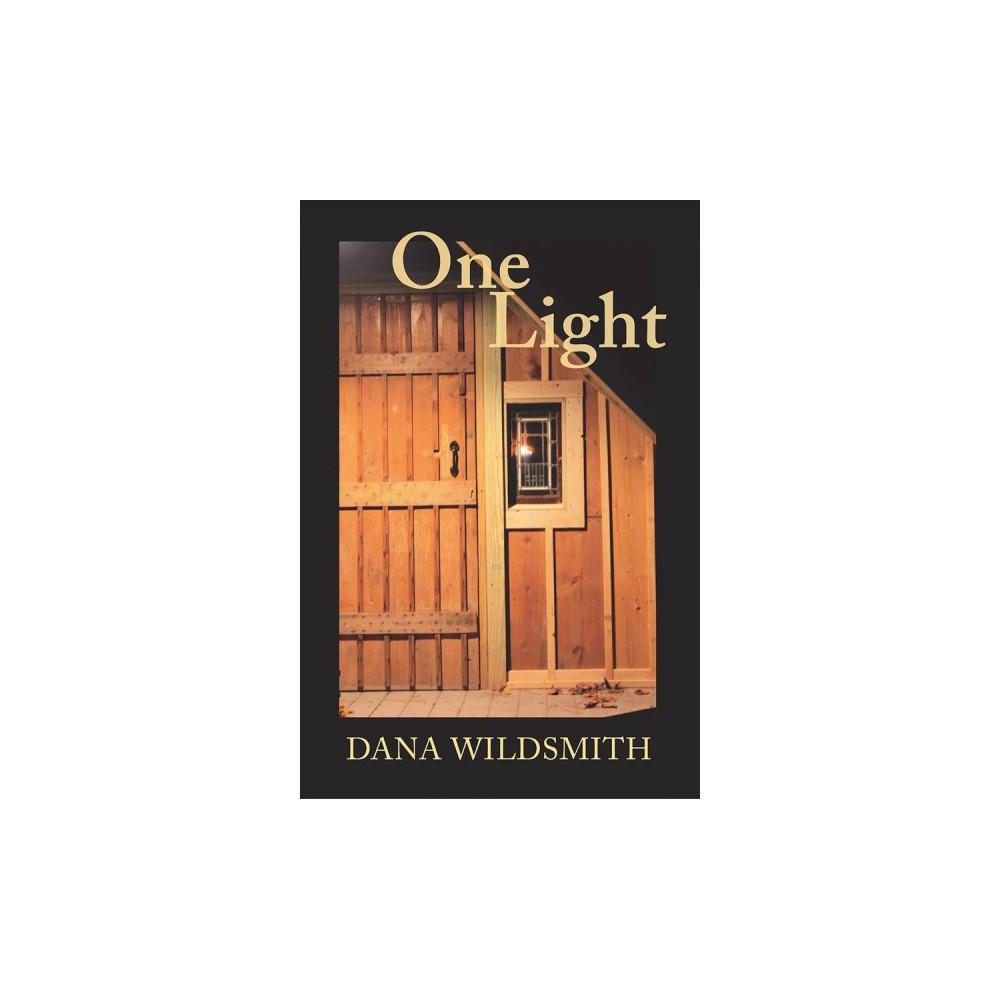 One Light - by Dana Wildsmith (Paperback)