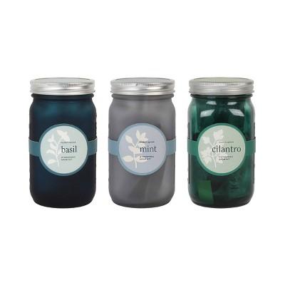 Modern Sprout Glass Jar Grow Set - Basil + Mint + Cilantro