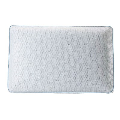 Sealy Perfect Chill Memory Foam Pillow (Standard)