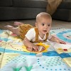 Baby Einstein Sea & City Sensory Playscape Plush Activity Mat - image 3 of 4