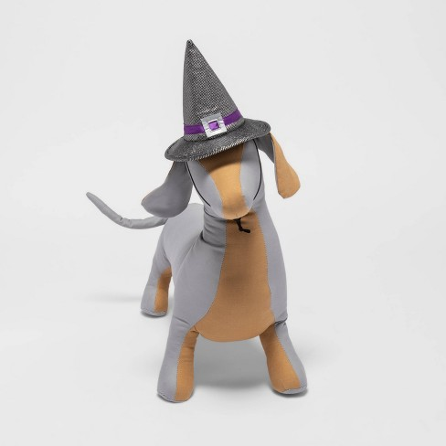 Witch Hat Halloween Cat Costume - Hyde & EEK! Boutique™ - image 1 of 3