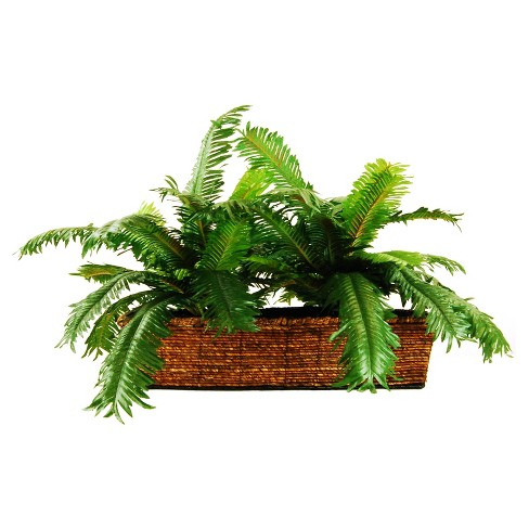 "Artificial Palm Plant Green 26"" - LCG Florals - image 1 of 1"