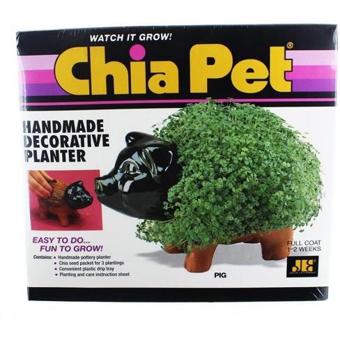 Joseph Enterprises Inc Chia Pet Grass Planter Pig Target