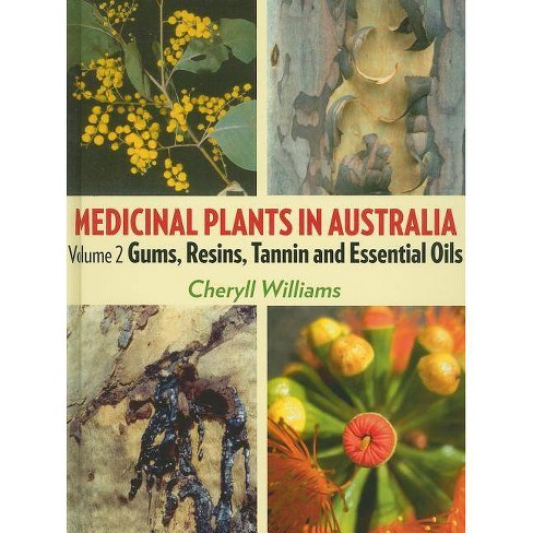 Medicinal Plants in Australia - by  Cheryll Williams (Hardcover) - image 1 of 1