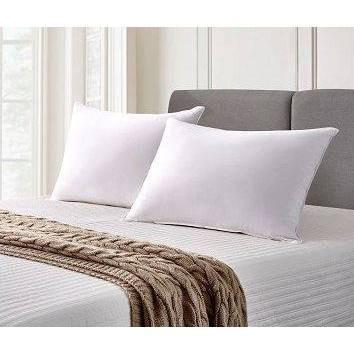 Jumbo 2pk Back Sleeper Goose Feather & Down Fiber Bed Pillow - Cannon