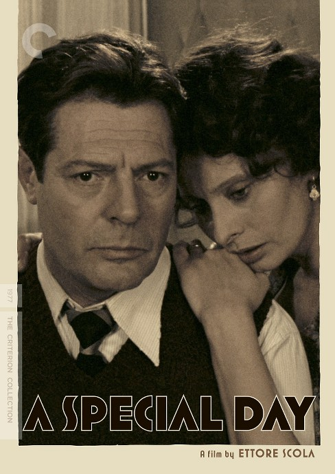 Special day (DVD) - image 1 of 1