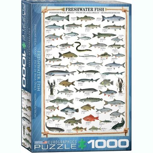 Eurographics Inc. Freshwater Fish 1000 Piece Jigsaw Puzzle - image 1 of 4