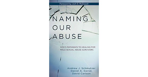 Naming Our Abuse : God's Pathways to Healing for Male Sexual Abuse Survivors (Paperback) (Andrew J. - image 1 of 1