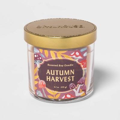 4.1oz Lidded Glass Jar Autumn Harvest Candle - Opalhouse™