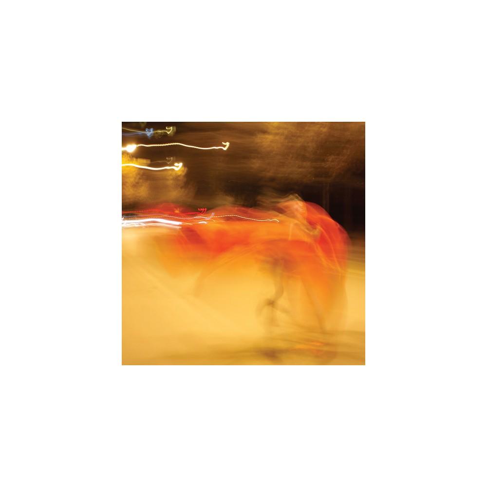 William Basinski - Shadow In Time (Vinyl)