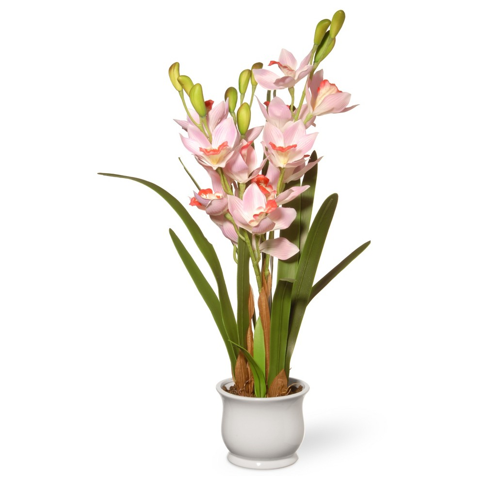 28 Light Pink Orchid Flowers - National Tree Company, White