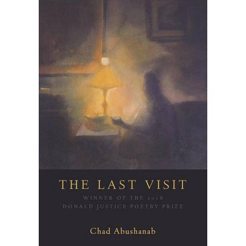 The Last Visit - by  Chad Abushanab (Paperback) - image 1 of 1