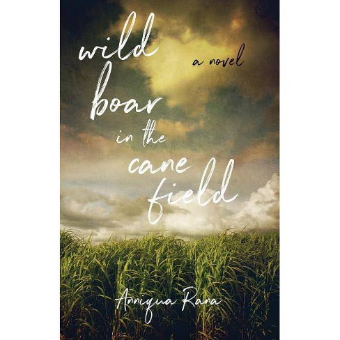 Wild Boar in the Cane Field - by  Anniqua Rana (Paperback) - image 1 of 1