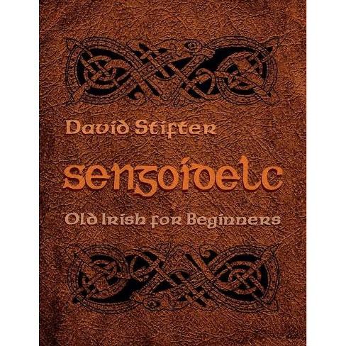 Sengoidelc - (Irish Studies) by  David Stifter (Paperback) - image 1 of 1