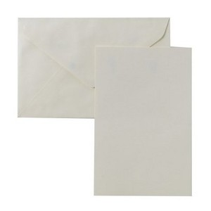 Blank Note Cards with Envelopes (50ct) - Ivory