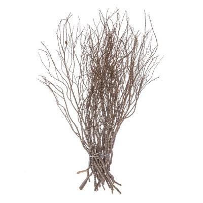 "Vickerman 36"" Tigerwood bundle, 25 stems per Bundle , Dried"