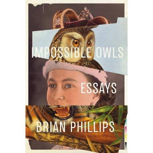 Impossible Owls - by  Brian Phillips (Paperback) - image 1 of 1