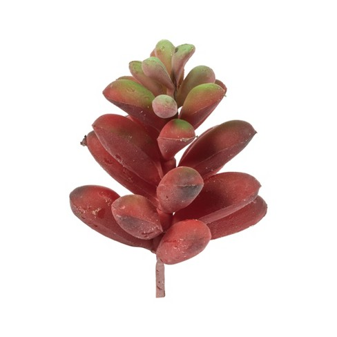 "Vickerman 4"" Assorted Succulent Picks. - image 1 of 3"