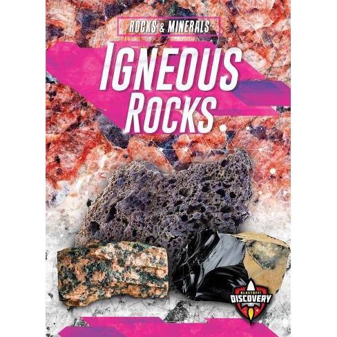 Igneous Rocks - (Rocks & Minerals) by  Jenny Fretland Vanvoorst (Paperback) - image 1 of 1