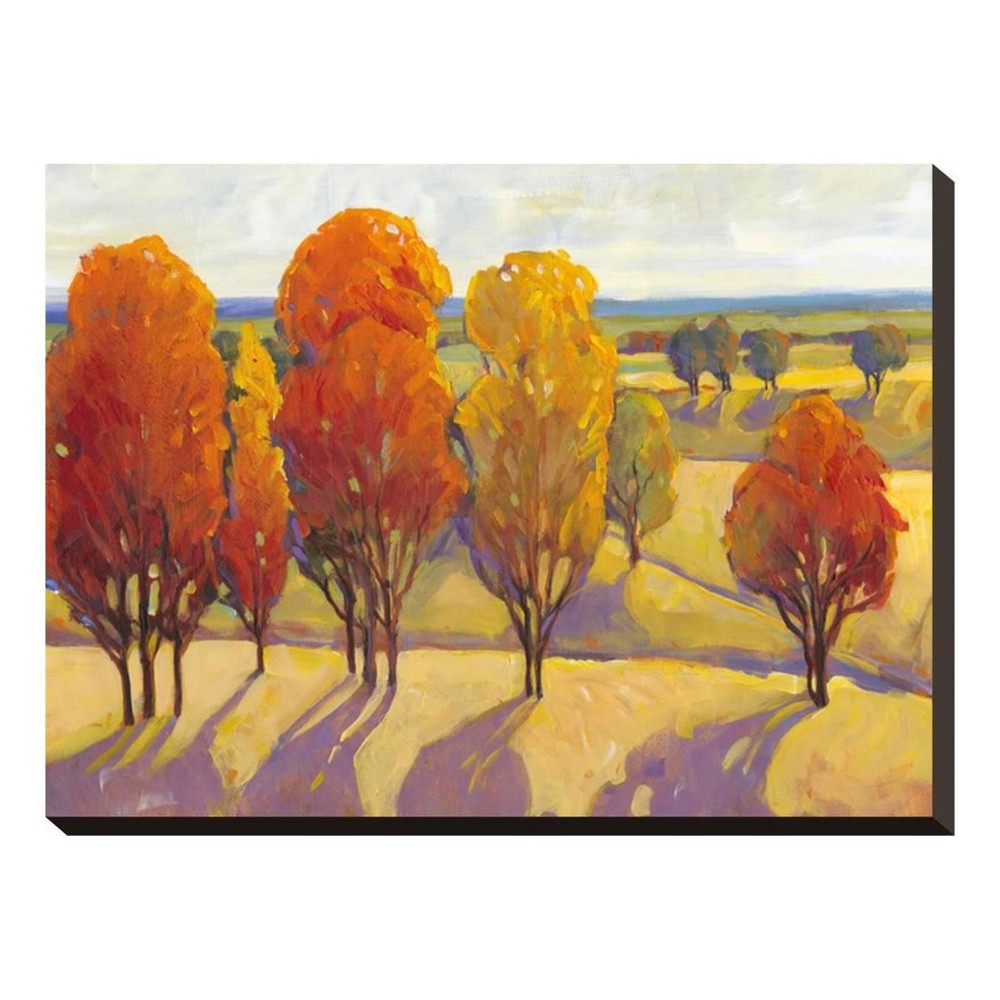 Day Glow II By Tim O'Toole Stretched Canvas Print 20x15 - Art.com, Multicolored