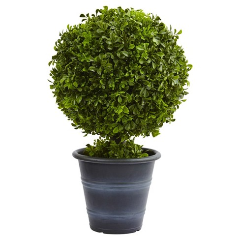 "Boxwood Ball Topiary in Planter (23"") - Nearly Natural - image 1 of 2"