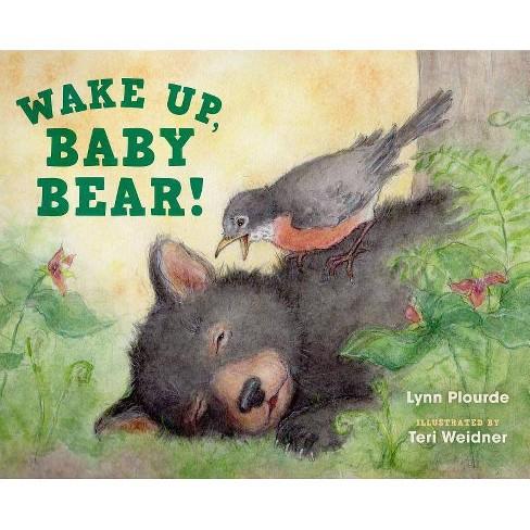 Wake Up, Baby Bear! - by  Lynn Plourde (Hardcover) - image 1 of 1