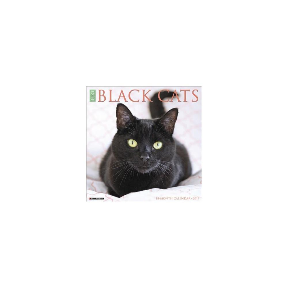 Just Black Cats 2019 Calendar - (Paperback)