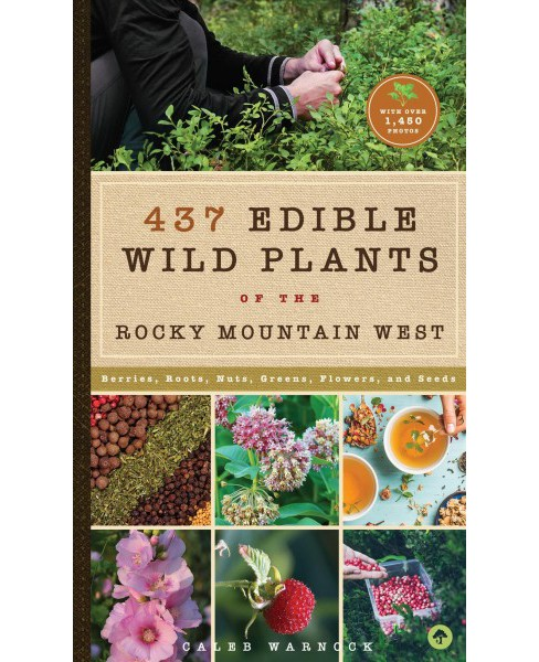 437 Edible Wild Plants of the Rocky Mountain West : Berries, Roots, Nuts, Greens, Flowers, and Seeds - image 1 of 1
