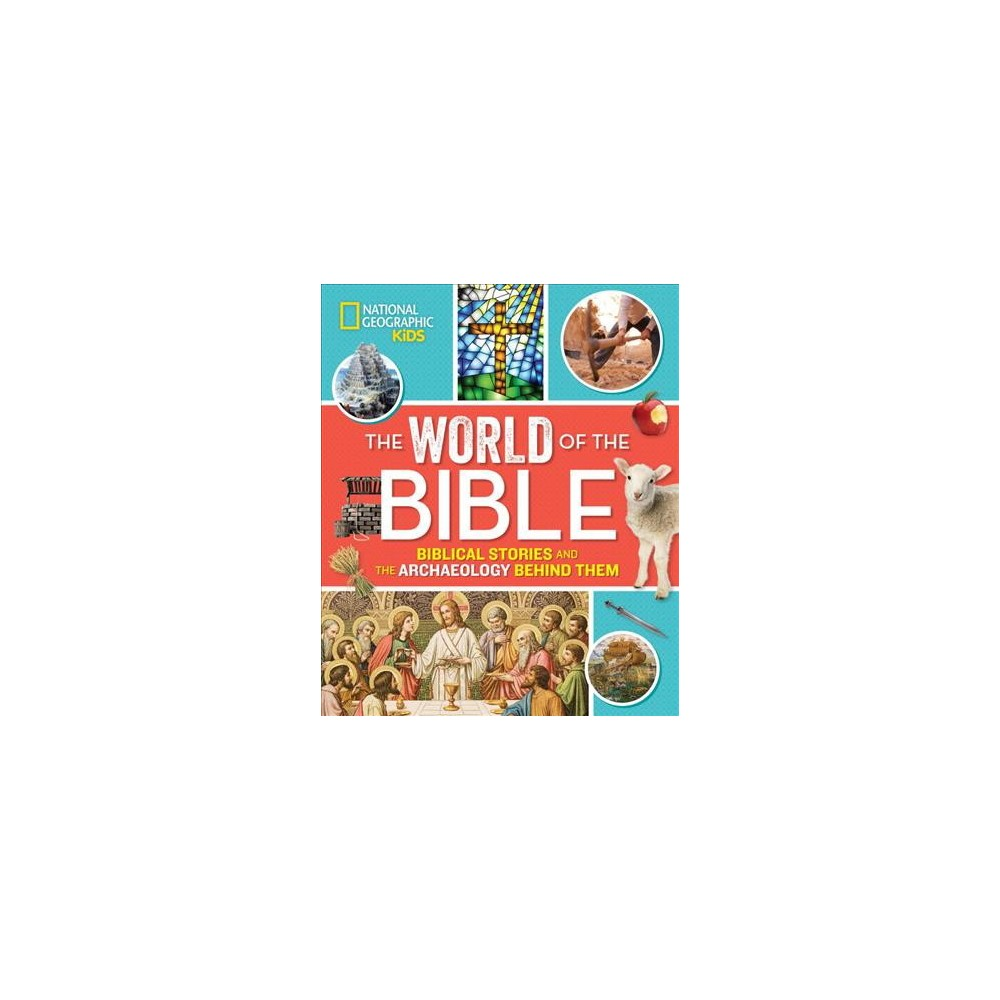 World of the Bible : Biblical Stories and the Archaeology Behind Them - by Jill Rubalcaba (Hardcover)