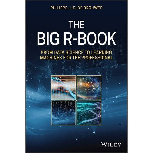 The Big R-Book - by  Philippe J S de Brouwer (Hardcover) - image 1 of 1